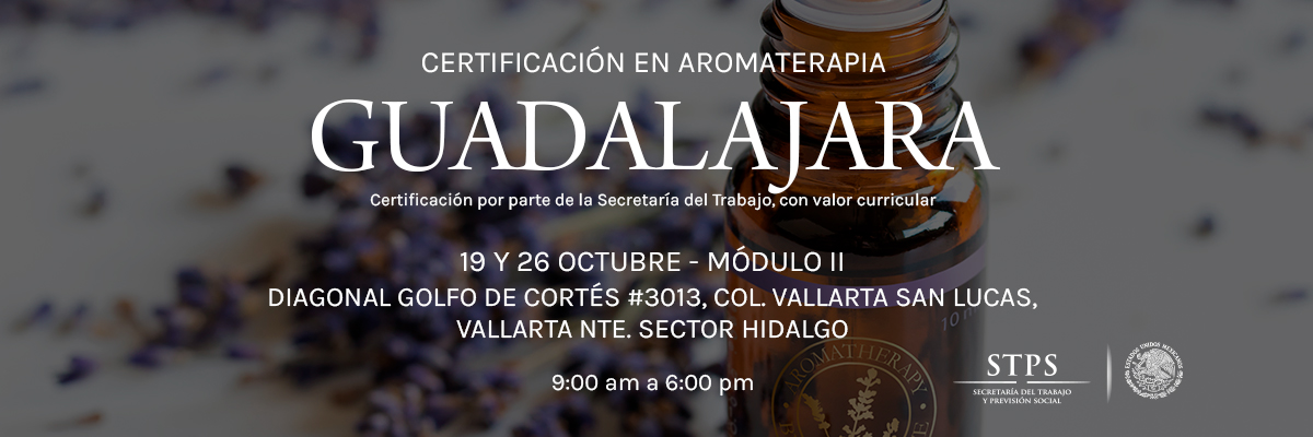 Guadalajaraoctubre20191926desktop